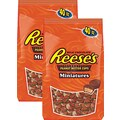REESES® MINI CUPS 40 oz. 2/PK