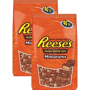 REESES® MINI CUPS 40 oz. 2/PK