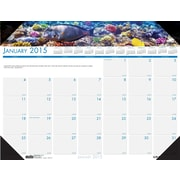 House of Doolittle™ 2015 Monthly, January-December, Sea Life Desk Pad, 22 x 17