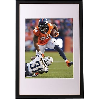 16in. x 20in. Framed NFL Print