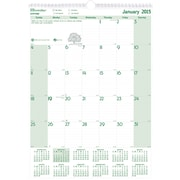 Rediform® Monthly Wall Calendar, 12 x 17