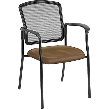 Raynor Eurotech Dakota 2 Steel Guest Chair, Canyon Mudslide (7011 CANY-MUD)