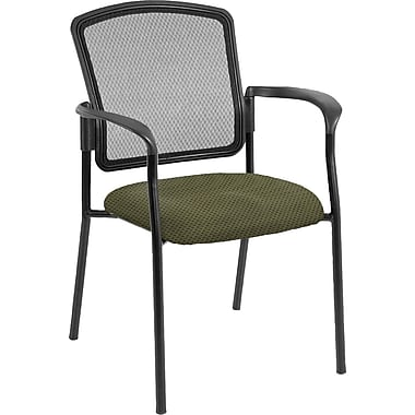 Raynor Eurotech Dakota 2 Fabric/Mesh Guest Chair, Expo Leaf