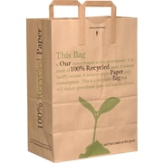 Handled Grocery Bag, 100% Recycled, 1/6 Bbl., Printed, 300 pk