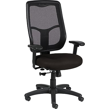 Raynor Eurotech Apollo Vinyl/Mesh Multi-function Highback Chair