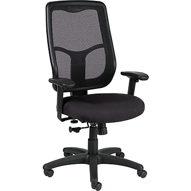 Raynor Eurotech Apollo Fabric Mid-back Multi-Function Task Chair, Van Dyke Brazil