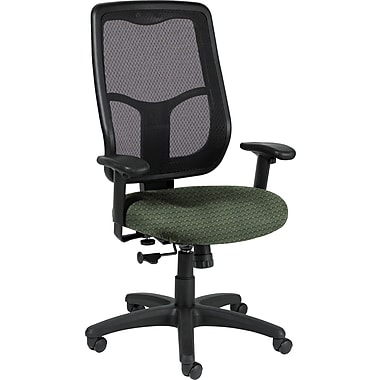 Raynor Eurotech Apollo Fabric Mid-back Multi-Function Task Chair, Cirque Summer Grass