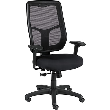 Raynor Eurotech Apollo Fabric Mid-back Multi-Function Task Chair, Basis Onyx