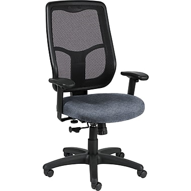 Raynor Eurotech Apollo Fabric Mid-back Multi-Function Task Chair, Ring Sapphire