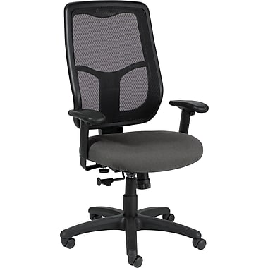 Raynor Eurotech Apollo Fabric Mid-back Multi-Function Task Chair, Basis Fog