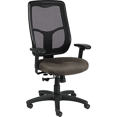 Raynor Eurotech Apollo Fabric Mid-back Multi-Function Task Chair, Transport Pewter