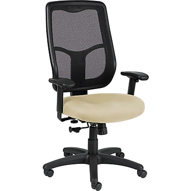 Raynor Eurotech Apollo Vinyl/Mesh Mid-back Multi-Function Highback Chair, Persuasion Sand