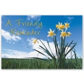 Custom Postcards Medical Scenic Floral Sky