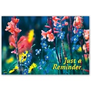 Custom Postcards Medical Wildflowers Reminder