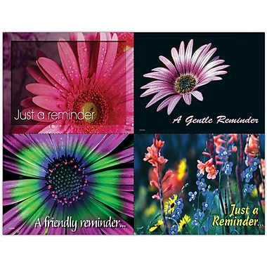 MAP Brand Scenic Assorted Laser Postcards Assorted Floral