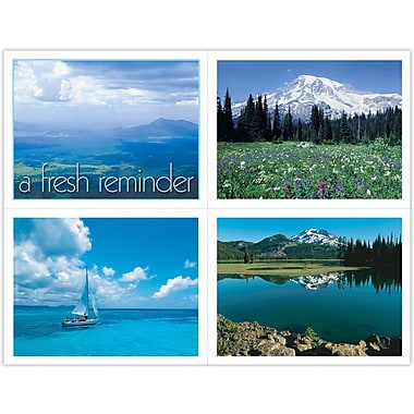 MAP Brand Generic Assorted Laser Postcards A Fresh Reminder