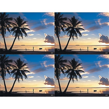 MAP Brand Scenic Laser Postcards Palm Trees and Ocean Scene