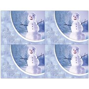 MAP Brand Photo Image Laser Postcards Holiday Series, Winter