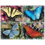 MAP Brand Scenic Assorted Laser Postcards Beautiful Butterflies