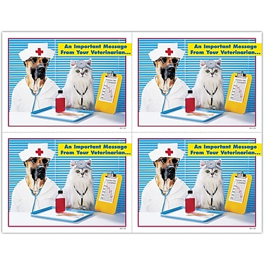 MAP Brand Graphic Image Laser Postcards Nurse and Doctor Pets