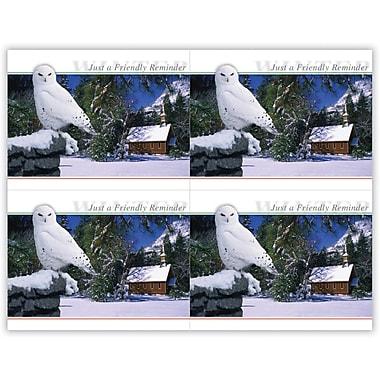 MAP Brand Scenic Laser Postcards Owl in Tree