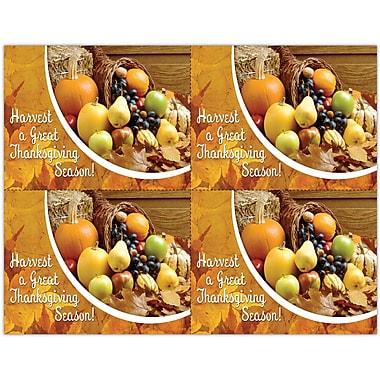 MAP Brand Photo Image Laser Postcards Thanksgiving