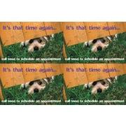 MAP Brand Humorous Laser Postcards Dog Under Fence