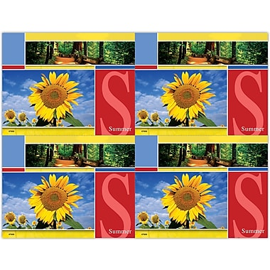 MAP Brand Scenic Laser Postcards Sunflower, Forest, Summer