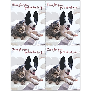 MAP Brand Photo Image Laser Postcards Pet's Check-up