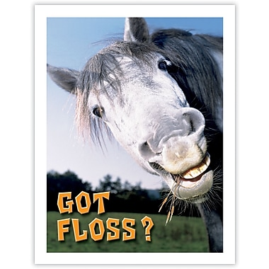 MAP Brand Humorous Laser Postcards Horse Got Floss?