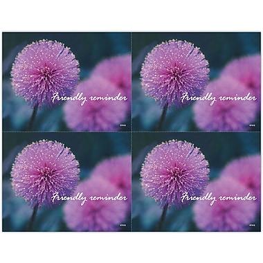 MAP Brand Scenic Laser Postcards Thistle Flower
