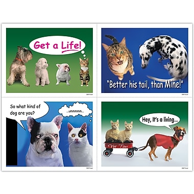 MAP Brand Humorous Assorted Laser Postcards Dog and Cat Humor