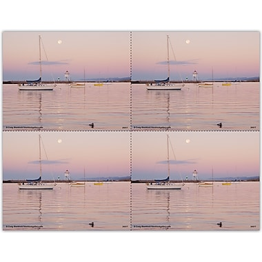 MAP Brand Recall Generic Laser Postcards Liscensed Sailboat