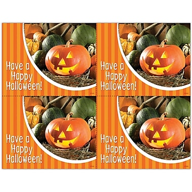 MAP Brand Photo Image Laser Postcards Halloween