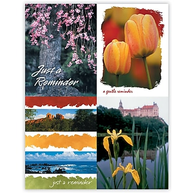 MAP Brand Scenic Assorted Laser Postcards Floral