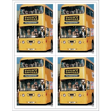 MAP Brand Humorous Laser Postcards Pets on Bus