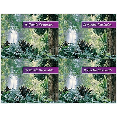 MAP Brand Scenic Laser Postcards Jungle Waterfall,