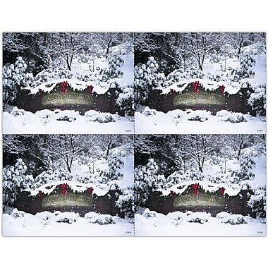 MAP Brand Photo Image Laser Postcards Snow