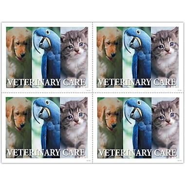 MAP Brand Photo Image Laser Postcards Veterinary Care
