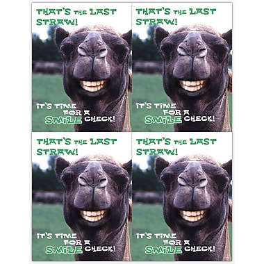 MAP Brand Humorous Laser Postcards Smile Llama