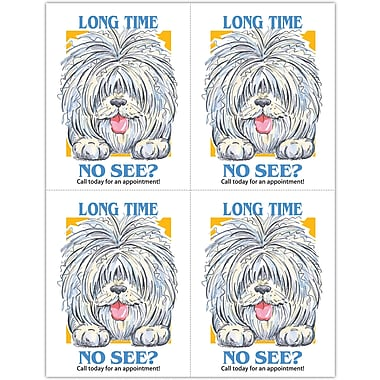 MAP Brand Humorous Laser Postcards Shaggy Dog