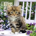 2015 BrownTrout Publishers I Love Kittens Monthly Wall Calendar, 12in. x 12in.