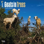 2015 BrownTrout Publishers Goats in Trees Monthly Wall Calendar, 12 x 12