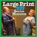 2015 BrownTrout Publishers Large Print for Big Senior Moments Monthly Wall Calendar, 12in. x 12in.