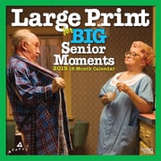 2015 BrownTrout Publishers Large Print for Big Senior Moments Monthly Wall Calendar, 12 x 12