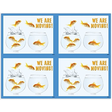 MAP Brand Graphic Image Laser Postcards Fish Bowls