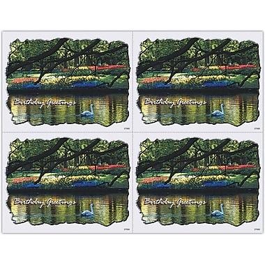 MAP Brand Photo Image Laser Postcards Swan on Lake