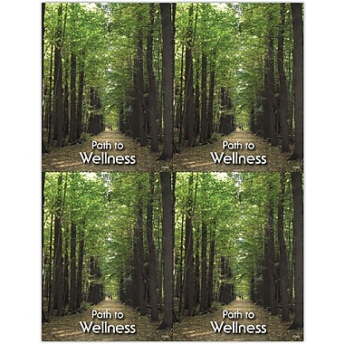 MAP Brand Photo Image Laser Postcards Tree Path