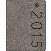 AT-A-GLANCE® Contemporary Weekly Appointment Book, 8 7/8 x 11 3/8, 2015