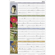 AT-A-GLANCE 2015 Seasons In Bloom Erasable Planner, Jan.-Dec., Wall, 36 x 24